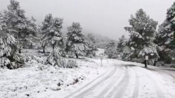 3 killed as Storm Gloria buries Spain