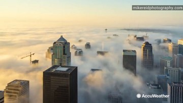 Fog City: Seattle nearly disappears under fog