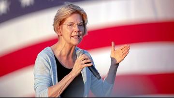 Elizabeth Warren's false Facebook ad part of Democrats criticism with social media
