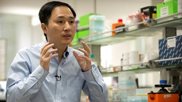 China halts work by team on gene-edited babies