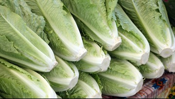 FDA: Ventura County one of six possible sources for E. coli-tainted romaine