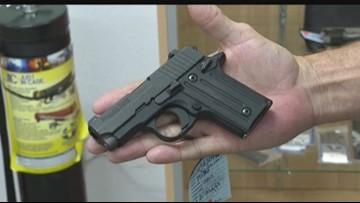 Gun expert reminds Texans of castle law protections