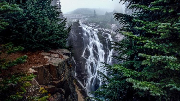 foggy-myrtle-falls-creek-washington.jpg