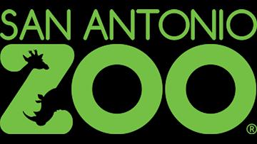 San Antonio Zoo forced to furlough majority of staff due to coronavirus