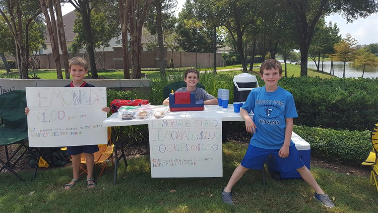 <p>The three brothers set up a lemonade stand in their neighborhood and sold $1 cups and $1 bags of cookies.</p>