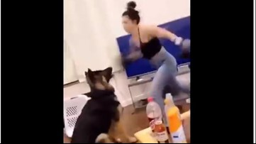 Video of woman repeatedly punching dog sparks investigation