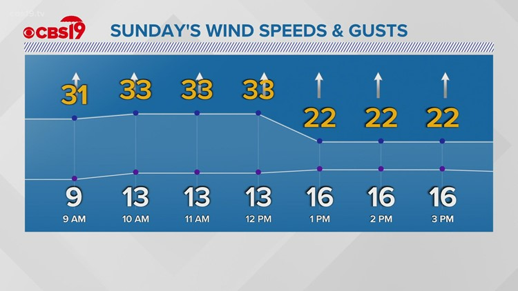 Sunday will be warm and breezy with an isolated rainstorm possible