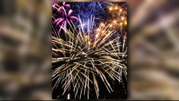 TIPS: Keeping your pets calm during 4th of July fireworks