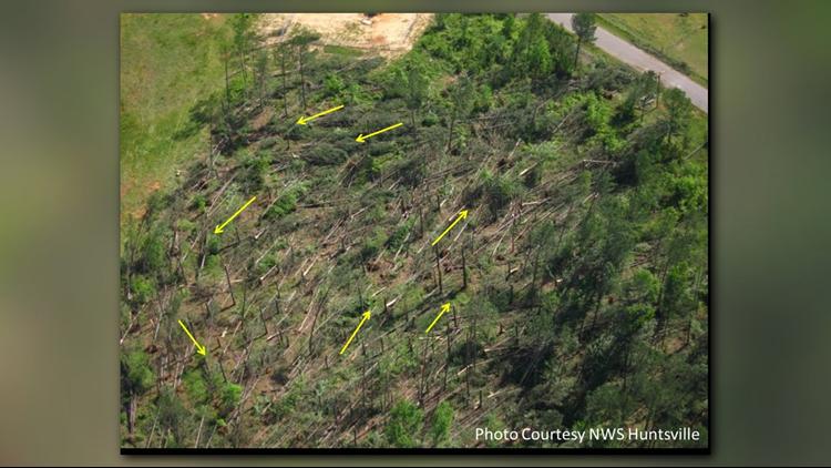031419 Tornado Damage NWS PIC