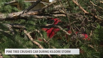 Pine tree crushes car during Kilgore storm