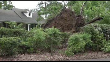 Residents begin clean-up process after storm scatters tree limbs, downed power lines throughout Smith County neighborhood