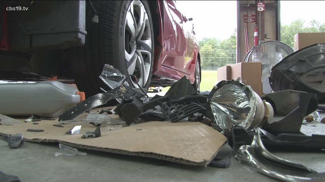 Avoiding animal-vehicle collisions
