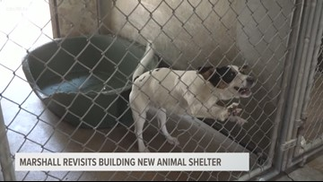 City of Marshall could finally get a new animal shelter