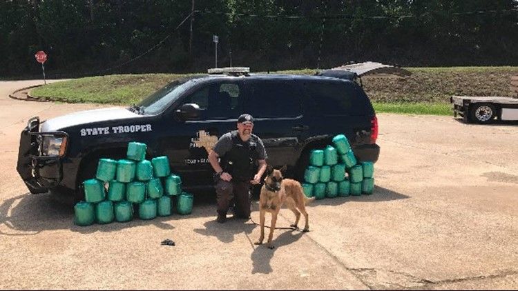 Kane sniffed up about 220 pounds of marijuana from a tractor trailer during a traffic stop.