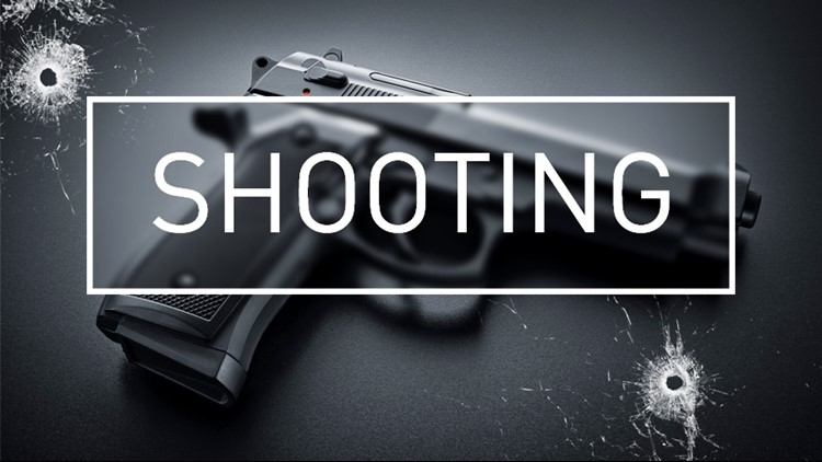No injures were reported after shots were fired during a disturbance between a couple people at the park.