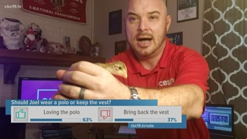 Joel Barnes Shows off a Guinea Keet During the Forecast