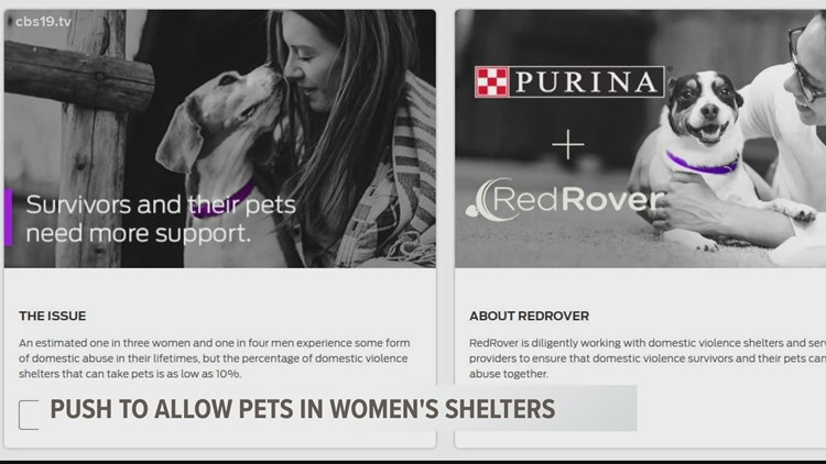 There's a nationwide push to allow pets in women's shelters
