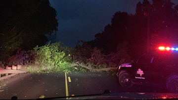 Fallen tree blocking traffic on State Highway 42 south of Goforth Road in Kilgore