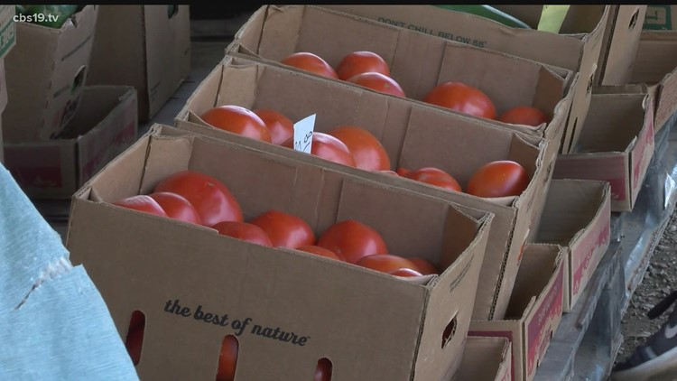Totally East Texas: Celebrating the Jacksonville Tomato and the growers who produce the delicious red treat
