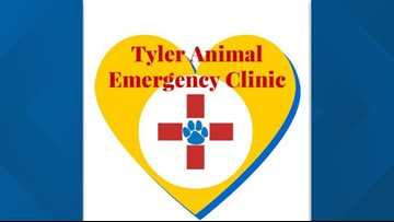 'Paws N People' blood drive in Tyler
