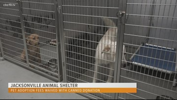 Jacksonville Animal Shelter waiving adoption fee with donation of canned foods