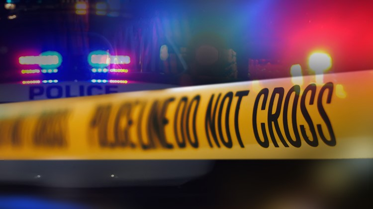 Grandson shot by grandfather while trying to break into home, Long View police say