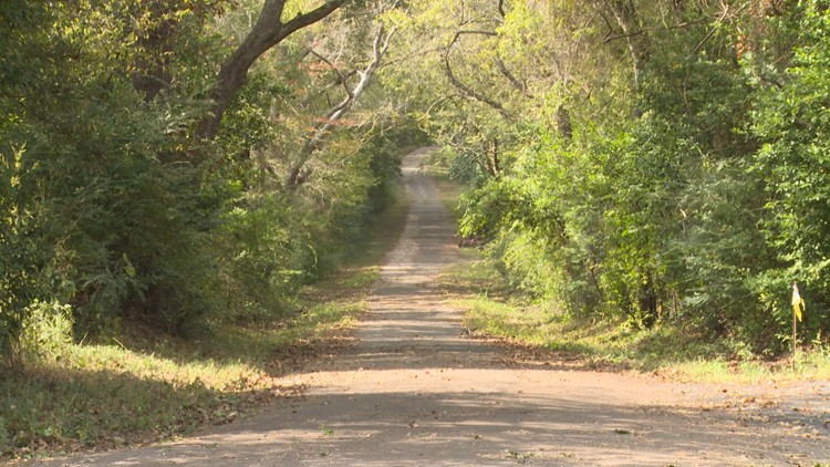 Haunted by monkeys? A circus accident led to a haunted bridge in East Texas